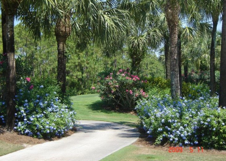 Golf Naples Reciprocals this Summer and Fall #20