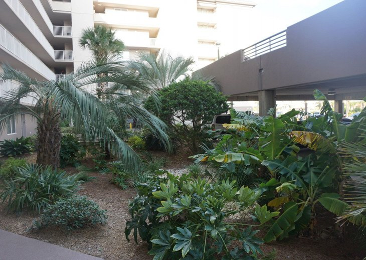 DISCOUNT Jan. 2020 Book for a Fabulous Oceanfront 3 Bedroom, 3 Baths Condo #48