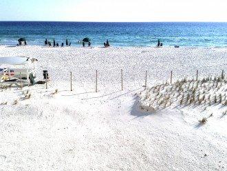 ENJOYING SURF AND BEACH