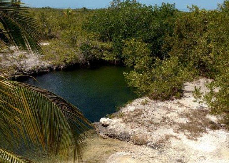 Caribbean Cove/beautiful waterfront view #16