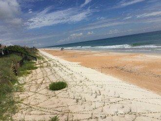 Turtle Beach #1