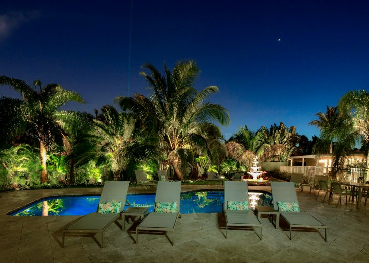 Pool Deck with Lighted Palms at night