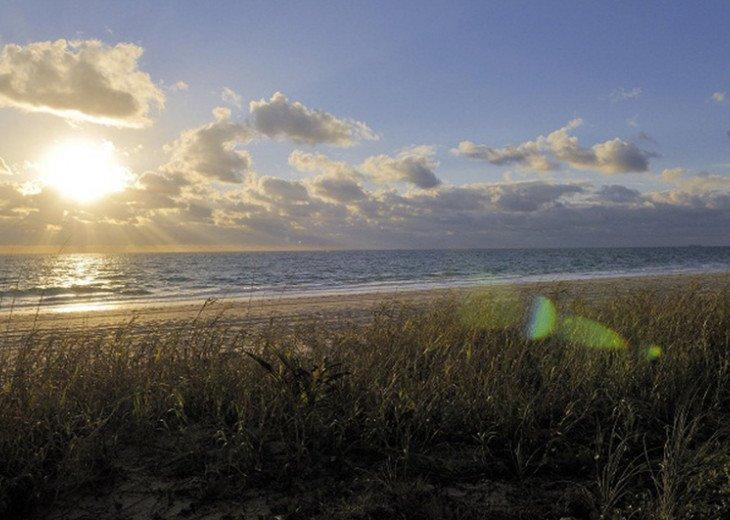 Beach Condo #18