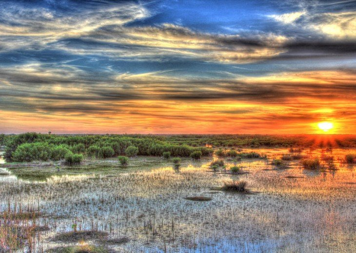 Experience the Everglades