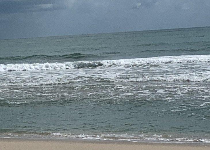 Forever Waves