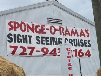 Sponge-O-Rama!