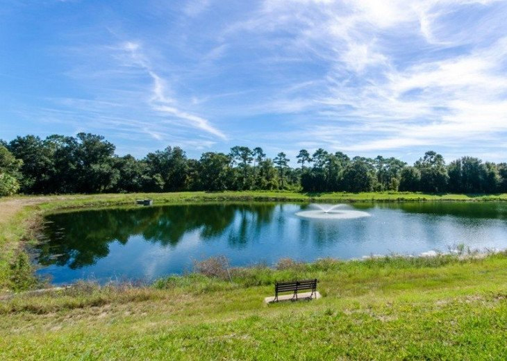 Fabulous Oakwater Resort in Kissimmee near Mystic Dunes Golf #14