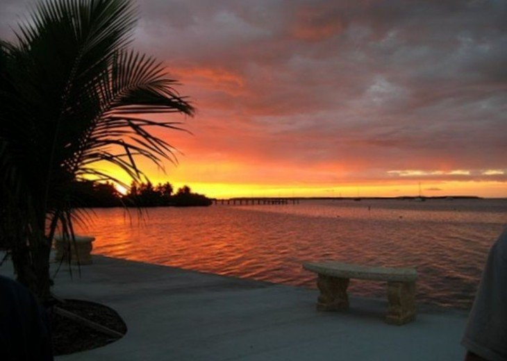Bayside: 1st Floor Apartment in Native Hammock on Florida Bay #3