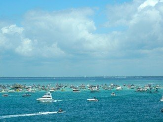Rent a boat for a few hours and explore Crab Island