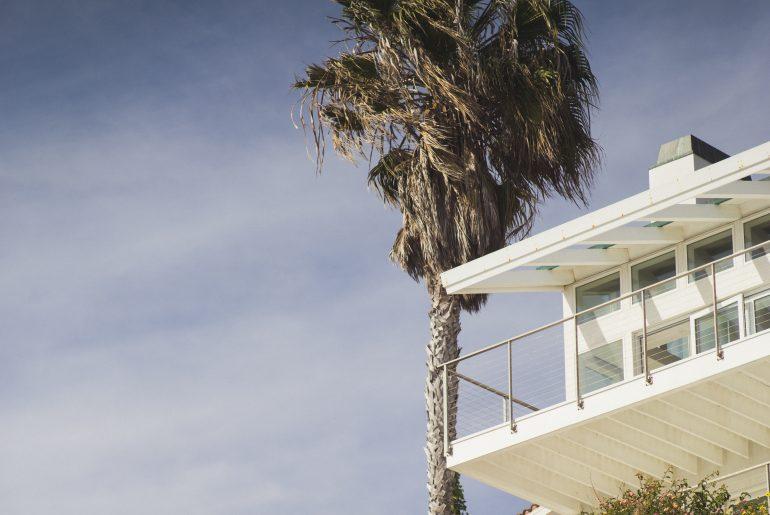 Beach house with palm tree
